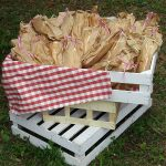 picnic-kalogianis-catering-8